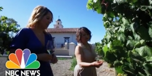 Ceja Family Creates Labor Of Love At Latino Family-Owned Vineyard