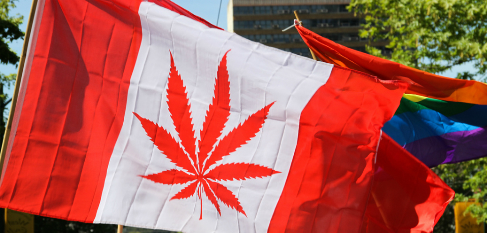 essay on legalizing weed in canada